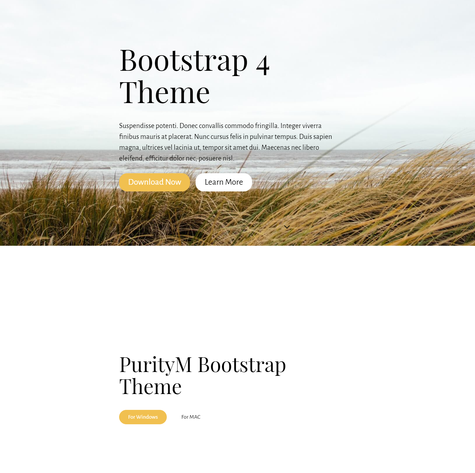 HTML5 Bootstrap 4 Templates